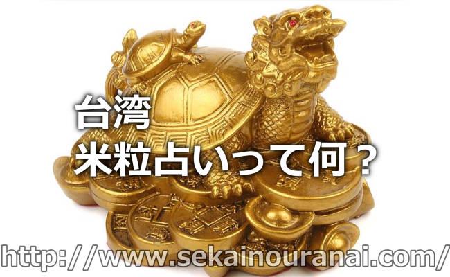 中国4000年以上昔から行われていた占いの起源「亀占い」は台湾でできるの?